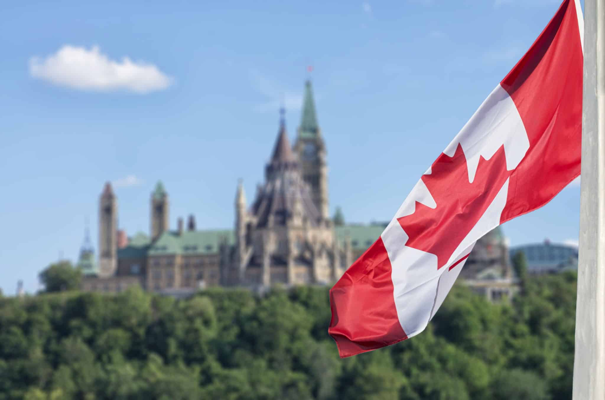 Melissa Miller Testifies at House of Commons Committee Studying Elder Abuse