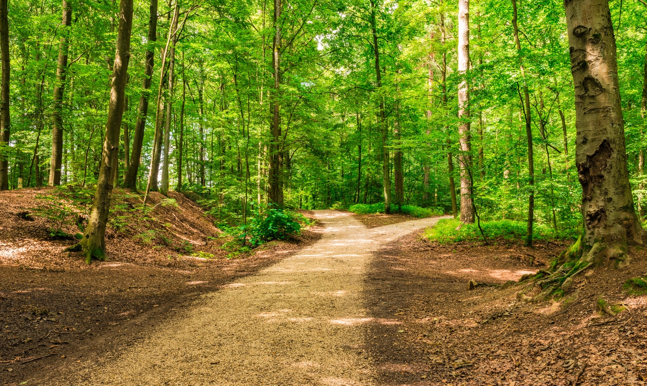 Know Your Rights Before Setting Foot on that Recreational Trail